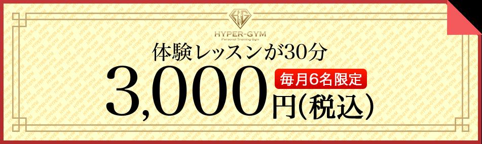 体験レッスンが30分3,000円(税込)